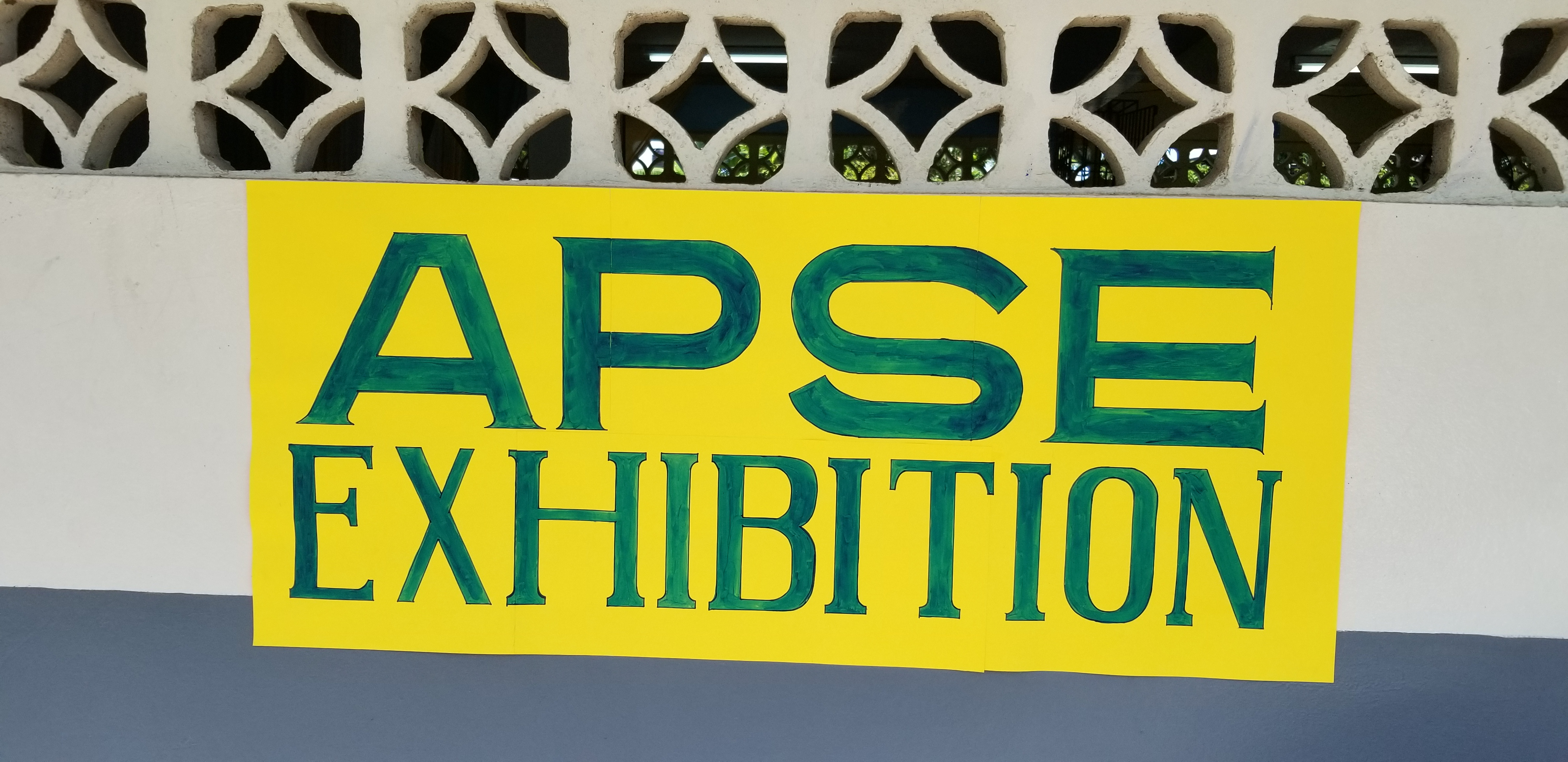 Alternative Pathway to Secondary Education (APSE) Exhibition