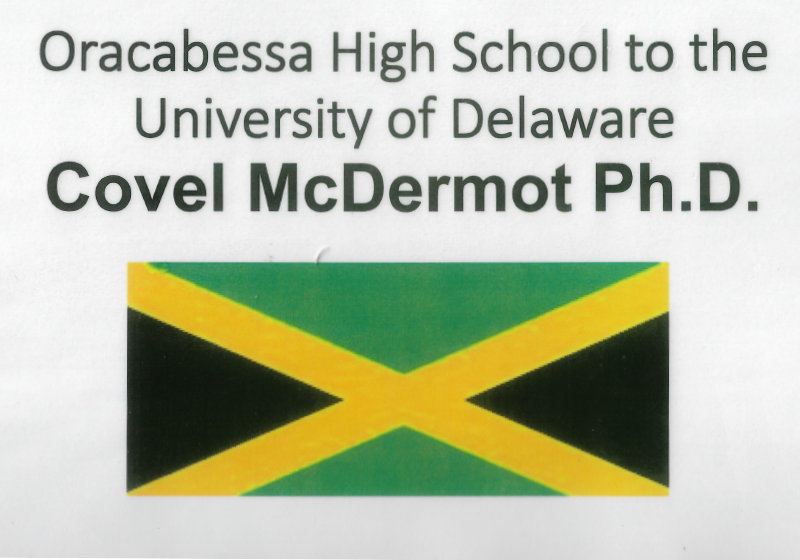 Academic and Professional Career of Covel Rashique McDermot